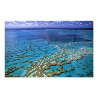 Australia - Queensland - Great Barrier Reef. 6 Photographic Print