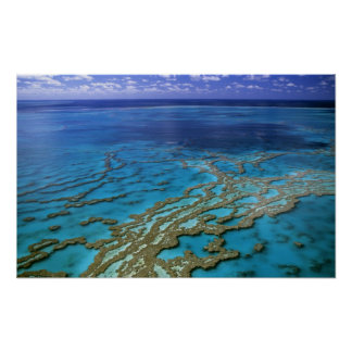 Australia - Queensland - Great Barrier Reef. 6 Poster