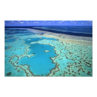Australia - Queensland - Great Barrier Reef. 7 Art Photo