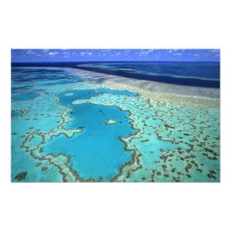 Australia - Queensland - Great Barrier Reef. 7 Art Photo