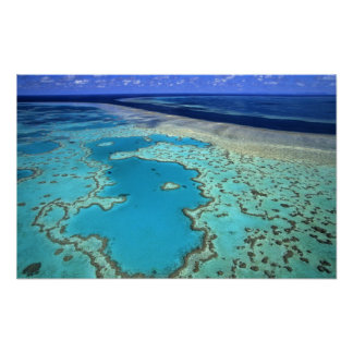 Australia - Queensland - Great Barrier Reef. 7 Poster