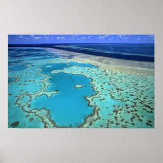 Australia - Queensland - Great Barrier Reef. 7 Print