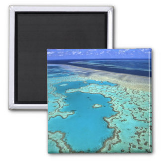 Australia - Queensland - Great Barrier Reef. 7 Square Magnet