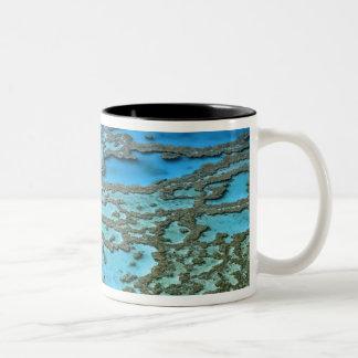 Australia - Queensland - Great Barrier Reef. Two-Tone Coffee Mug