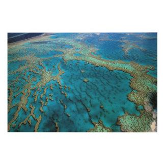 Australia - Queensland - Great Barrier Reef Wood Wall Art