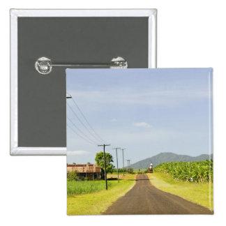 Australia, Queensland, North Coast, Babinda. 15 Cm Square Badge
