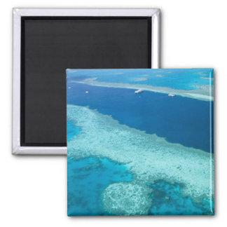 Australia, Queensland, Whitsunday Coast, Great 5 Square Magnet