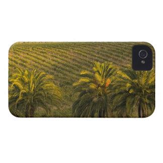 Australia, South Australia, Barossa Valley, iPhone 4 Cases