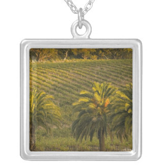 Australia, South Australia, Barossa Valley, Silver Plated Necklace