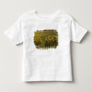Australia, South Australia, Barossa Valley, Toddler T-Shirt