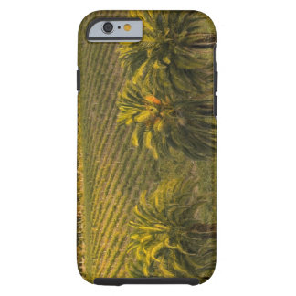 Australia, South Australia, Barossa Valley, Tough iPhone 6 Case