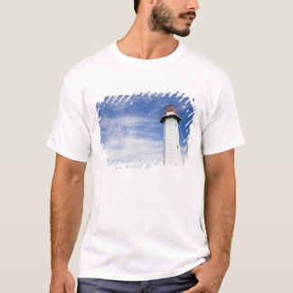 Australia, State of Queensland, Cleveland. The T-Shirt