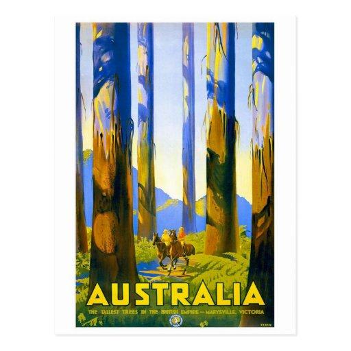 Australia - Vintage Travel Postcard