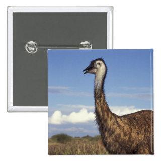 Australia, Western Australia. Emu (Dromaius 15 Cm Square Badge