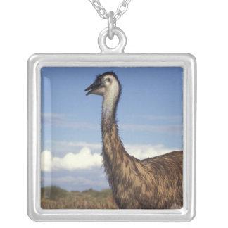 Australia, Western Australia. Emu (Dromaius Silver Plated Necklace
