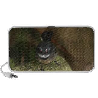 australian birds and flora PC speakers