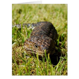 Australian_Blue_Tongue_Lizard,_Big_Greeting_Card. Big Greeting Card