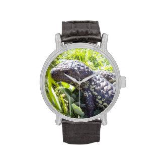 Australian_Blue_Tongue_Lizard,_Wrist-Watch. Watches
