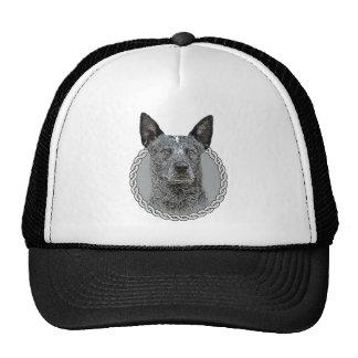 Australian Cattle Dog 001 Hat
