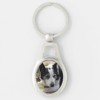 australian-cattle-dog-2 Silver-Colored oval key ring