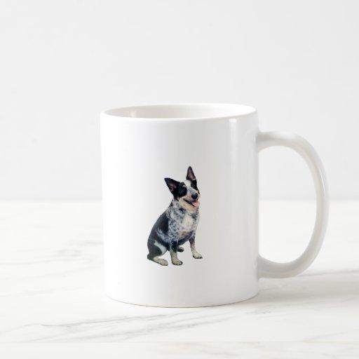 Australian Cattle Dog (A) Coffee Mug