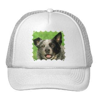 Australian Cattle Dog Baseball Cap Trucker Hat