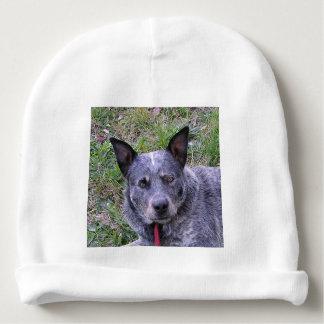Australian_cattle_dog blue.png baby beanie