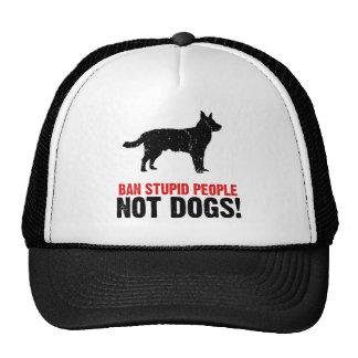 Australian Cattle Dog Hats