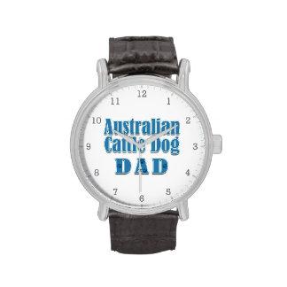 Australian Cattle Dog Dad Watches