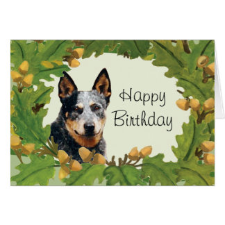 Australian Cattle Dog Happy Birthday Card