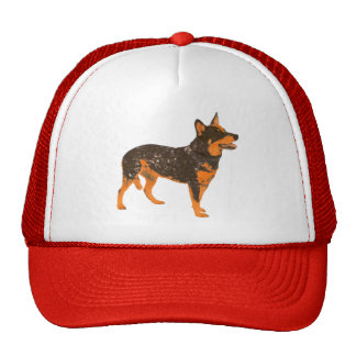 Australian Cattle Dog Hat