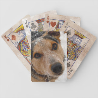 Australian Cattle Dog in Snow - Western Bicycle Playing Cards