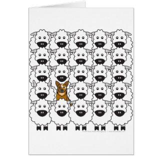 Australian Cattle Dog in the Sheep Card