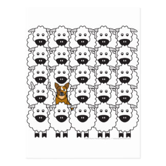Australian Cattle Dog in the Sheep Postcard