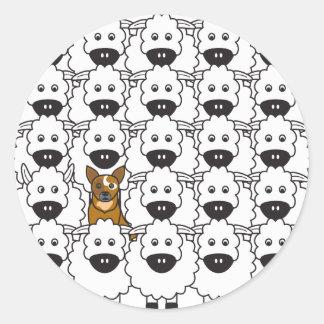 Australian Cattle Dog in the Sheep Round Sticker