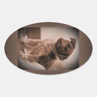 Australian Cattle Dog ~ Puppy ~ Mascot 1943 WW II Stickers