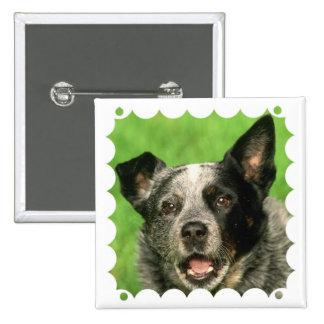 Australian Cattle Dog Square Pin