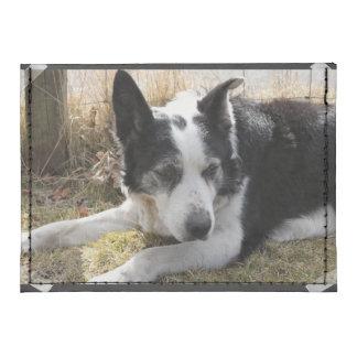 Australian Cattle Herd Dog Tyvek® Card Case Wallet