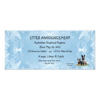 Australian Cattledog on Blue Crystal 10 Cm X 24 Cm Invitation Card
