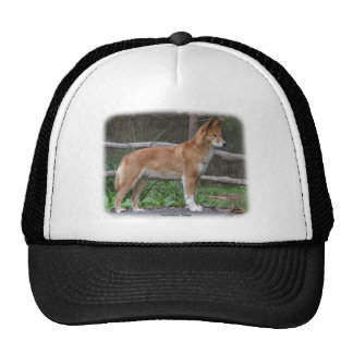 Australian Dingo 9Y209D-268 Cap