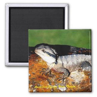 Australian Eastern Water Dragon Magnet