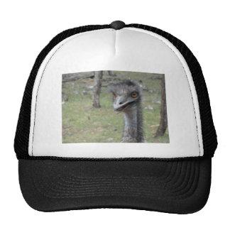 Australian Emu Hat
