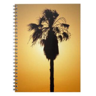 Australian Fan Palm silhouette notebook