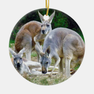 Australian Kangaroos Relaxing in the Sun Round Ceramic Decoration