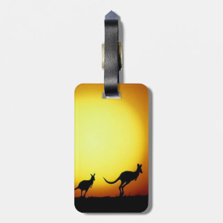Australian Kangaroos Silhouetted Against A Sunset. Bag Tag