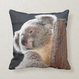Australian Koala Cushion