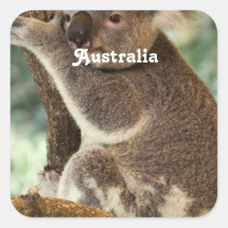 Australian Koala Stickers
