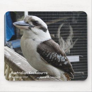Australian Kookaburra Mouse Pad