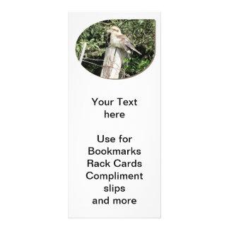 Australian Kookaburra - Offset Design Rack Card