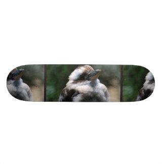 Australian Kookaburra Skateboards